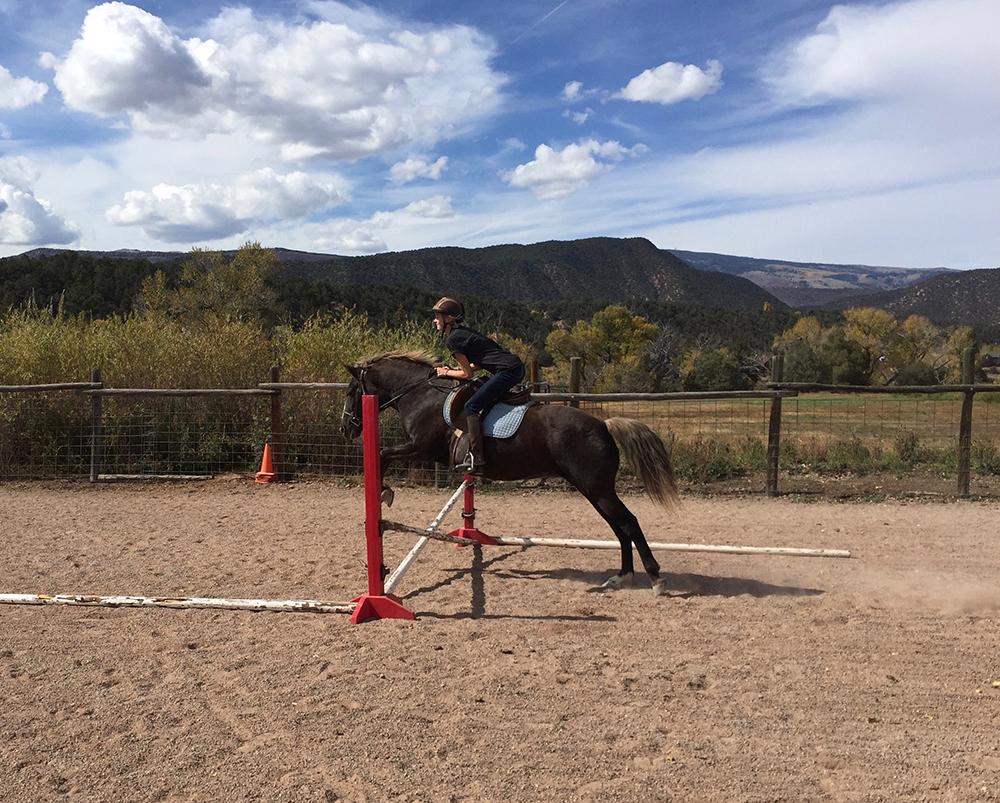HorseHorizontalWeb