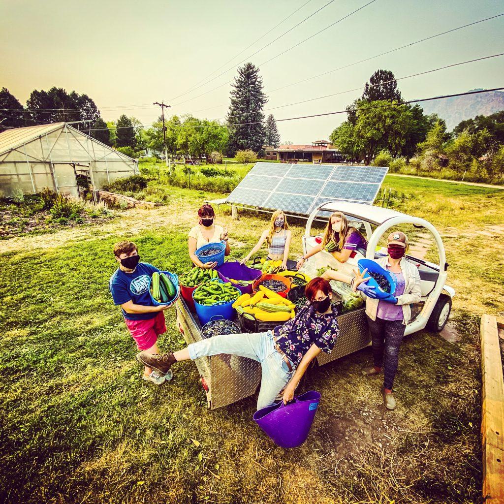 Garden Service Crew during the harvest